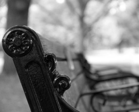 Solitude. (Shot at Piedmont Park Atlanta, GA)
